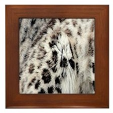 Snow Leopard Framed Tile