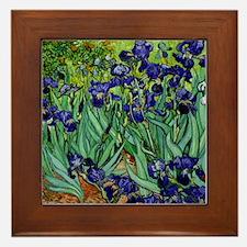 van gogh irises, st. remy Framed Tile