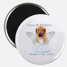 Dogue Angel Magnet