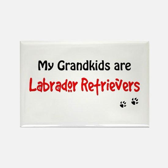 Grandkid Labs Rectangle Magnet