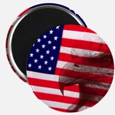 Eagle Face On American Flag Magnets