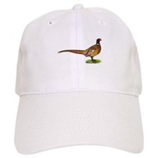 Proud Ringneck Pheasant Baseball Cap
