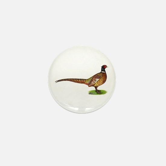 Proud Ringneck Pheasant Mini Button