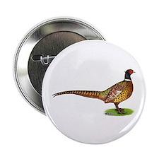 """Proud Ringneck Pheasant 2.25"""" Button"""