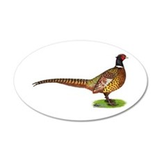 Proud Ringneck Pheasant Wall Decal