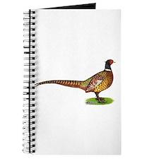 Proud Ringneck Pheasant Journal