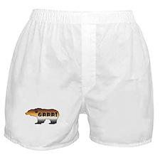 FURRY PRIDE BEAR/GRRR! Boxer Shorts