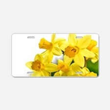 Daffodils Style Aluminum License Plate