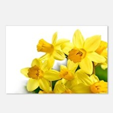 Daffodils Style Postcards (Package of 8)