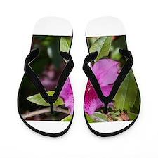 Azalea Flip Flops