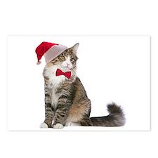 Santa Cat Postcards (Package of 8)