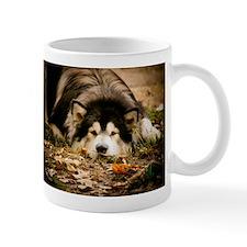Alaskan Malamute Viewing The World Mug Mugs