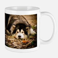 Alaskan Malamute Viewing The World Mug Mugs