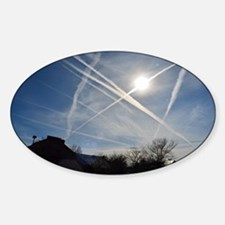 Chemtrail Grid Decal