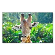 GIRAFFE LOVE Decal