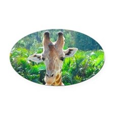 GIRAFFE LOVE Oval Car Magnet