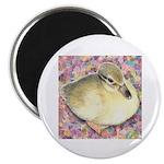 Snowy Mallard Duckling Magnet