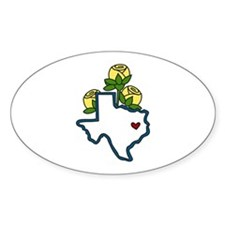 Texas Map Decal