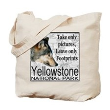 Take Only Pictures, Leave Onl Tote Bag
