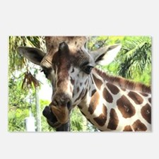 WILD GIRAFFE Postcards (Package of 8)
