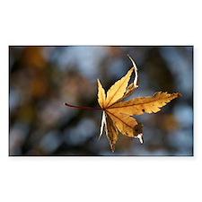 Fall Decal