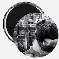 Militant Pug! Magnet