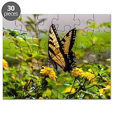 Cute Butterflies Puzzle