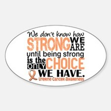 Uterine Cancer How Strong We Are Sticker (Oval)