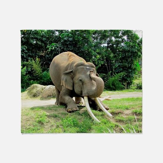 AWESOME ELEPHANT Throw Blanket