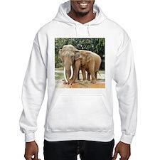 ELEPHANT LOVE Hoodie