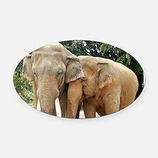 ELEPHANT LOVE Oval Car Magnet