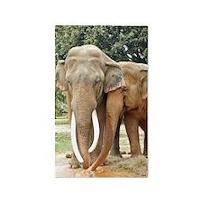 ELEPHANT LOVE 3'x5' Area Rug