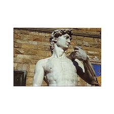 Michelangelo's David Statue Rectangle Magnet