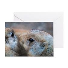 Ground Hog Secrets Greeting Card
