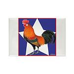 I'm A Star! Rectangle Magnet (100 pack)