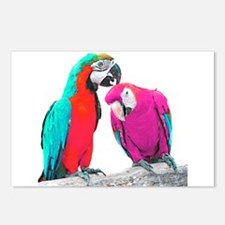 Colorful Parrots Postcards (Package of 8)
