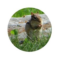 "Chipmunk snack 3.5"" Button"