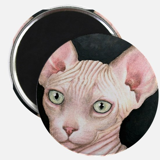 Cat 412 sphynx Magnet