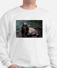 Happy Sea Lion Sweatshirt