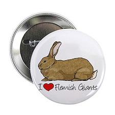 I Heart Flemish Giant Rabbits 2.25