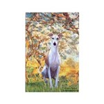 Spring / Whippet Rectangle Magnet