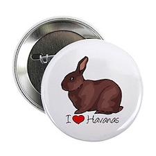 I Heart Havana Rabbits 2.25