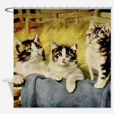 Three Kittens by E Graham Shower Curtain