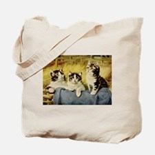 Three Kittens by E Graham Tote Bag