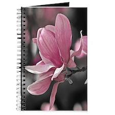 Pink Magnolia Journal