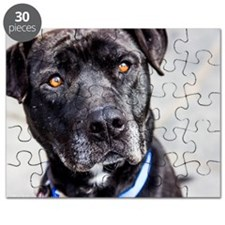 Blackie Needs a Home Puzzle