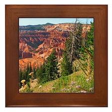 Cedar Breaks Utah Framed Tile