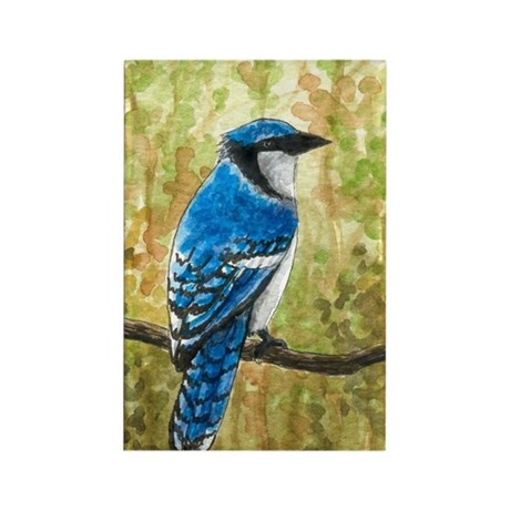 Bird 67 Blue Jay Rectangle Magnet