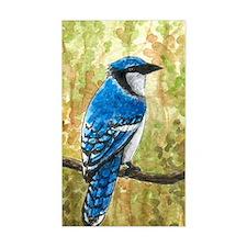 Bird 67 Blue Jay Decal