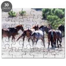 Return To Freedom 1 Puzzle